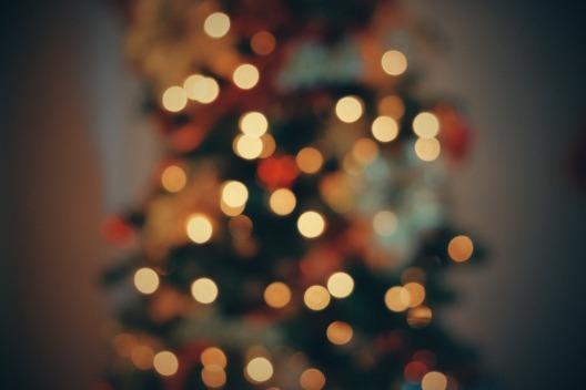 christmas-tree-2561872_1920